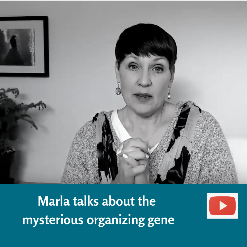 Marla's message about the organizing gene