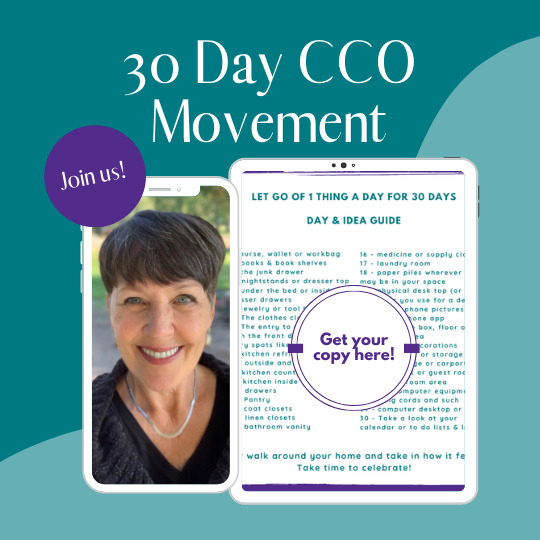 Clear & Simple, SEE IT. MAP IT. DO IT., Marla Dee, Kate Fehr, 30 Day Clutter Clear Out
