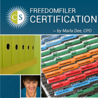Clear & SIMPLE, FreedomFiler Certification