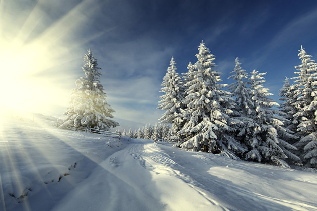 Clear & SIMPLE, Winter landscape